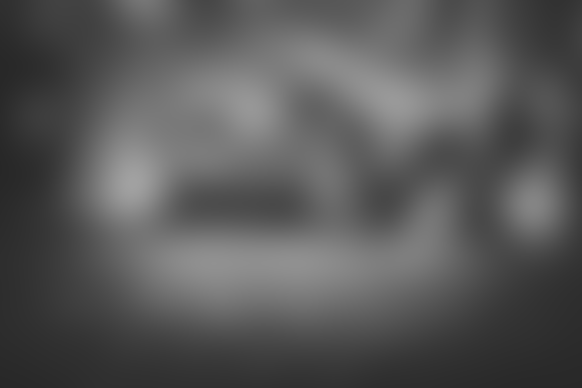 Phasellus in ex vitae justo gravida ullamcorper non sit amet turpis